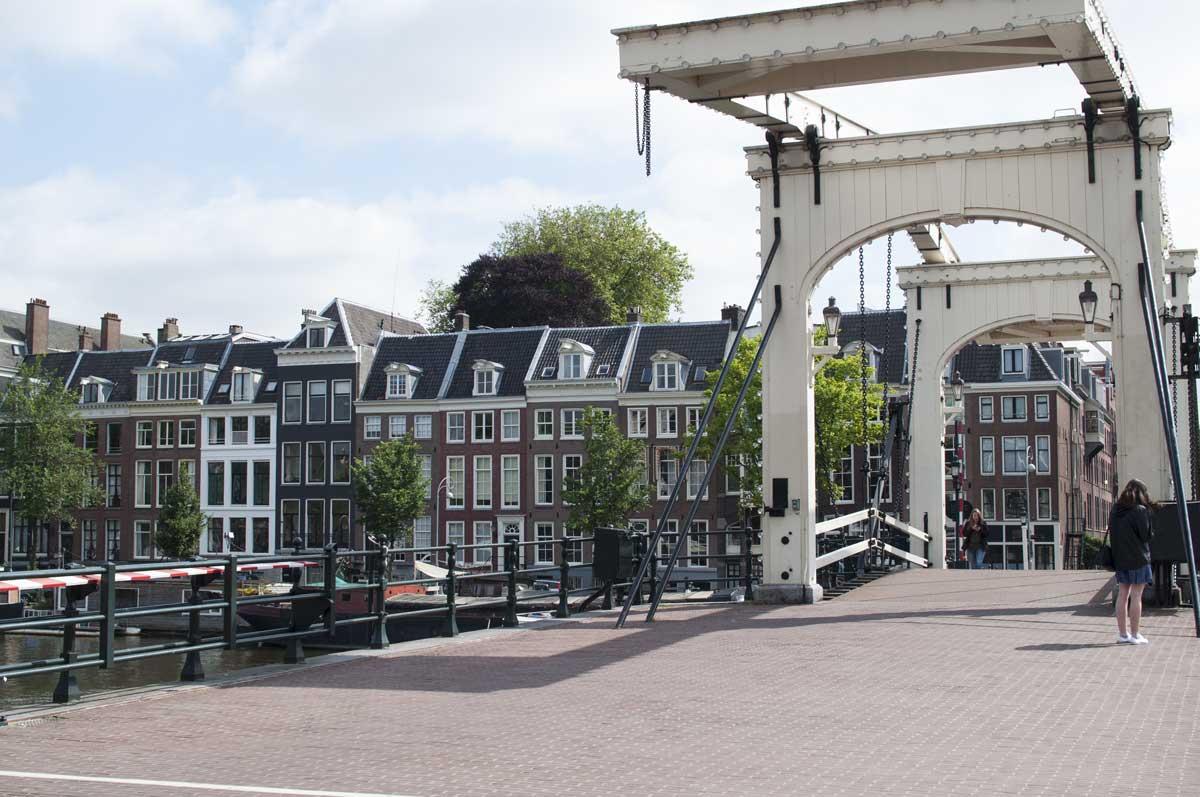 bridge-sm