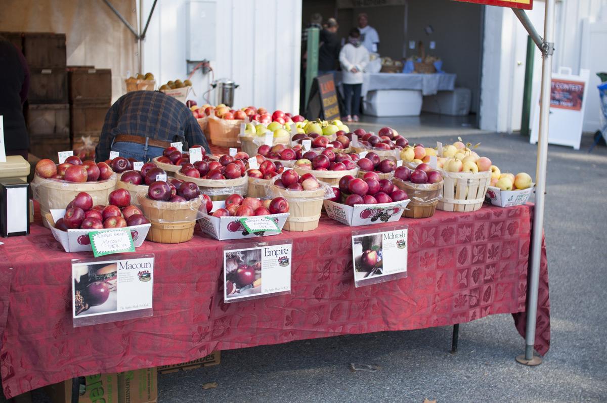 apples-sm