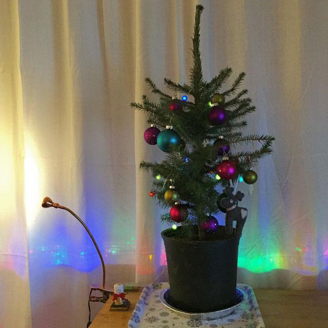 tiny-tree-sm